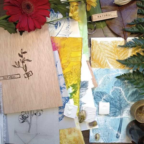 Imagen promocional para el taller de 12 técnicas de conservación de plantas para herbario